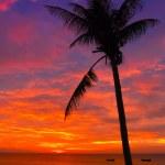 Sunset on the Vietnam coast — Stock Photo