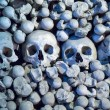 Human skulls and bones in Sedlec Ossuary, Kostnice cemetery church of All Saints in Sedlec — Stock Photo #46051743