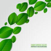 Abstraktní jarní zelené listy pozadí — Stock vektor