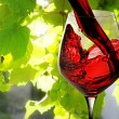 Red wine — Stock Photo #15742457