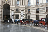 Horse carriages — Stock Photo
