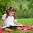 Little cute girl preschooler with book on plaid in park — Stock Photo #15339677