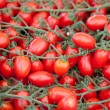 Bunches of fresh ripe red cherry tomatoes close-up — Stock Photo