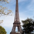National landmark Eiffel tower through trees in Paris France — Stock Photo