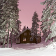 Stock Photo: Nightly Lapland house