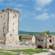 Medieval stone Kinizsi castle tower and countryside in Nagyvazso - Stock Photo