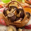 Woods mushrooms in woven basket on wooden  table in autumn — Stock Photo