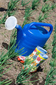 Watering can and rubber boots on the vegetable garden — Stock Photo