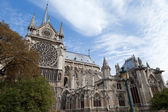Landmark Gothic cathedral Notre-dame on Cite island in Paris Fra — Stock Photo