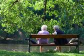Grootouders zijn praten op de Bank in het voorjaar park — Stockfoto