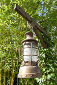 Kerosene oil lamp is hung up on green leaves background — Stock Photo