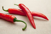 Fresh red hot cayenne chili pepper close-up on homespun tablecl — Stock Photo