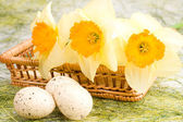 Daffodils in the basket and easter eggs — Stock Photo