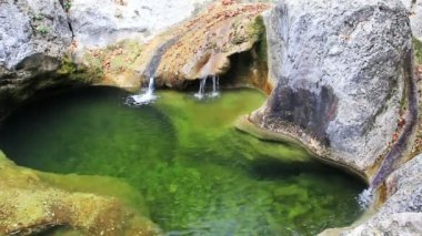 Little waterfalls in a peaceful wood. — Stock Video