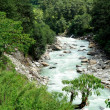Beautiful himalayan forest landscape, trek to Annapurna Base Cam - Stock Photo