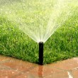 Stock Photo: Garden automatic irrigation system watering lawn