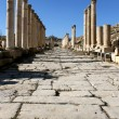 Ruins of the Greco-Roman city of Gerasa. Ancient Jerash. — Stock Photo