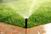 Garden automatic irrigation system watering lawn — 图库照片