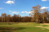 Tiergarten center city park — Stock Photo