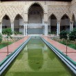 Water feature at Real Alcazar Moorish Palace in Seville — Stock Photo #15635557