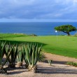 Stock Photo: Golf course by sea