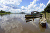 Amazon river boat pear — Stock Photo