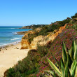 Stock Photo: Algarve cliff coast scenario