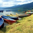 Boats in Fewa Lake — Stock Photo