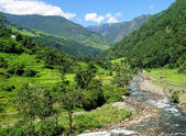 Champs de riz et freshwate. paysage de l'himalaya — Photo