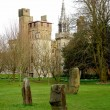 Bute park whit castle in the background, Cardiff, Wales. UK. — Stock Photo