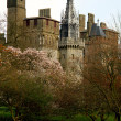Bute park whit castle in the background, Cardiff, Wales. — Stock Photo