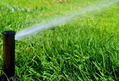 Irrigation system — Stock Photo