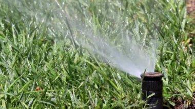 Sistema de pulverización de la irrigación del jardín — Vídeo de Stock