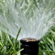 Stock Photo: Automatic Garden Irrigation Spray system watering lawn