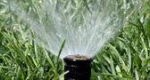 Automatisk trädgård spray bevattningssystem vattna gräsmattan — Stockfoto