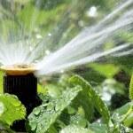 automatische tuin irrigatie spray systeem drenken flowerbed — Stockfoto