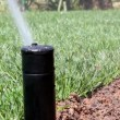 Stock Video: Automatic Garden Irrigation Spray system watering lawn