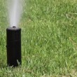 Garden Irrigation Sprinkler watering lawn — Stock Video