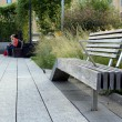High Line. New York City. Elevated pedestriPark — Stock Photo #32763799
