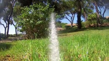 Garden Irrigation Sprinkler watering lawn (Point of View footage) — Стоковое видео