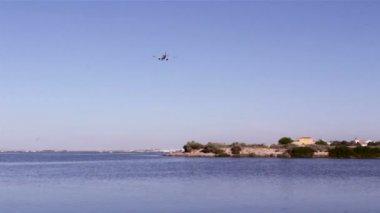 空の旅 - ファロ空港の商業飛行機の着陸のシルエット ビュー ria formosa 自然保護地域に位置します。ポルトガル、アルガルヴェ — ストックビデオ