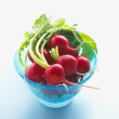 Stock Photo: Radishes