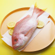 Whole Red Snapper — Stock Photo #16906093