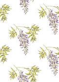 Watercolor seamless pattern with Wisteria — Stock Photo