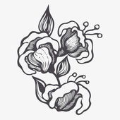 Floral design element. vector illustration — Vettoriale Stock