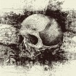 Skull and grunge vector background — 图库矢量图片