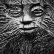 Faces of on Wood carv — 图库照片