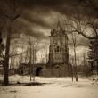 Gothic tower and old trees — Stockfoto