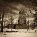 哥特式塔和老树 — 图库照片