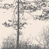 Sosna sylwetka drzewa i gałęzie — Wektor stockowy